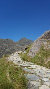 Photo of Miner's Track